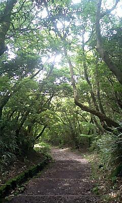 箱根で温泉三昧な2泊3日
