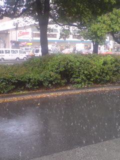 豪雨のヒトコマ