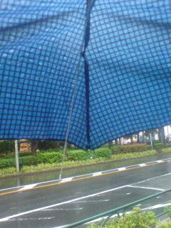 【番組の途中ですが】99円の傘