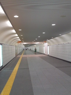 忽然と姿を現した新宿東南口地下歩道